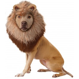 Lion Pet Costume  sc 1 th 224 & Costumes Australia | Buy Costumes for Kids u0026 Adults | Costumes.com.au