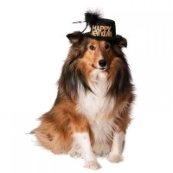 Happy New Year Pet Hat Costume Accessory.jpg
