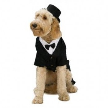Top Hat Pet Costume Accessory.jpg