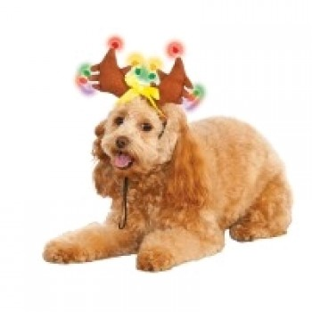 Reindeer Light Up Pet Costume.jpg