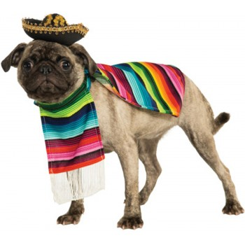 Mexican Poncho And Sombrero Pet Costume.jpg