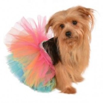 Rainbow Tutu Pet Costume.jpg