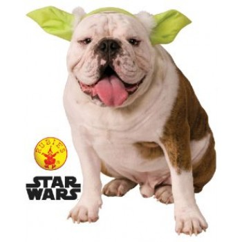 Star Wars Yoda Pet Headband Medium/Large.jpg