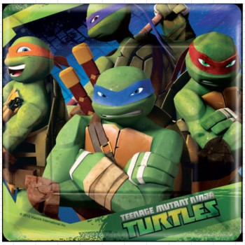 Teenage Mutant Ninja Turtles Paper Lunch Plates 18cm Pack of 8.jpg