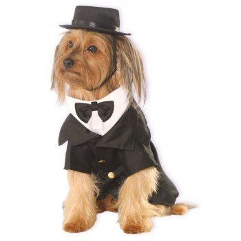 Dapper Dog Pet Costume.jpg