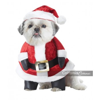 Santa Paws Dog Pet Costume.jpg