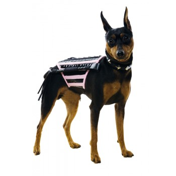 Doginatrix Dog Pet Costume.jpg