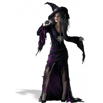 Sorceress  Adult Women's Costume.jpg