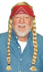 The Old Hippie Wig Adult Costume Hair Accessory_thumb.jpg