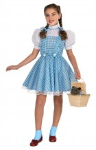 The Wizard of Oz Dorothy Deluxe Child Costume_thumb.jpg