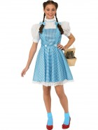 The Wizard of Oz Dorothy Deluxe Adult Costume_thumb.jpg