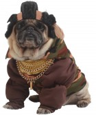 Pity the Fool Pet Costume_thumb.jpg