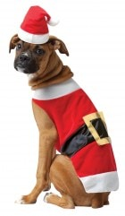 cffa36ee968 Santa Claus Pet Dog Costume