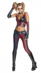 Batman Arkham City Secret Wishes Harley Quinn Adult Costume_thumb.jpg