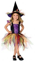 Glitter Witch Toddler / Child Costume_thumb.jpg