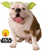 Star Wars Yoda Pet Headband Medium/Large_thumb.jpg