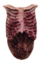 Walking Dead Walker Latex Chest_thumb.jpg