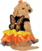 Butterfly Pet Costume_thumb.jpg