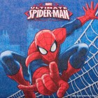 Spider-Man Luncheon Napkins Pack of 16_thumb.jpg