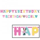 Minnie Mouse Fun to Be One 1st Birthday Letter Banners Pack of 2_thumb.jpg