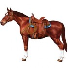 Melbourne Cup Horse Jointed Cardboard Cutout 96cm_thumb.jpg