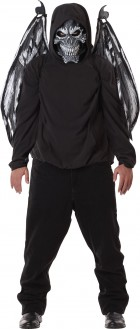Fallen Angel Mask and Wings Adult Costume Accessory Kit_thumb.jpg