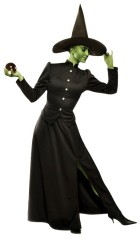 Classic Witch Adult Costume_thumb.jpg