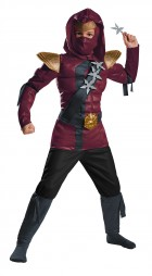 Lego Ninjago - Crimson Ninja Red Fire Muscle Child Costume_thumb.jpg