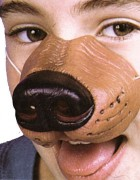 Dog Nose With Elastic_thumb.jpg