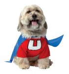 Underdog Plus Pet Costume_thumb.jpg