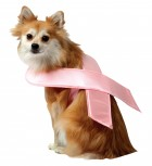 Pink Ribbon Pet Costume_thumb.jpg