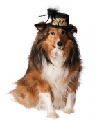 Happy New Year Pet Hat Costume Accessory_thumb.jpg