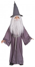 Lord of the Rings Gandalf Wizard Boys Child Costume_thumb.jpg