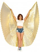 Metallic Gold Pleated Wings 360 Degree Adult Costume Accessory_thumb.jpg