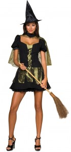 Wizard of Oz Sexy Wicked Witch of the West Adult Women's Costume_thumb.jpg