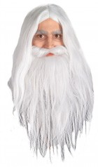 Lord of the Rings Gandalf Wig & Beard Men's Costume Accessory
