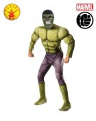The Incredible Hulk Deluxe Adult Costume Standard
