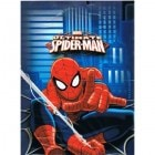 Spider-Man Loot Bags Pack of 8