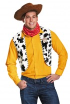 Toy Story Woody Deluxe Adult Costume Kit