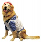 Raggedy Ann Pet Costume