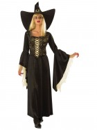 Golden Web Witch Adult Costume