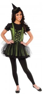 Wizard Of Oz Wicked Witch of the West Young Adult Women's Costume_thumb.jpg