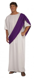 Roman Noble Toga Caesar Fancy Dress Costume_thumb.jpg