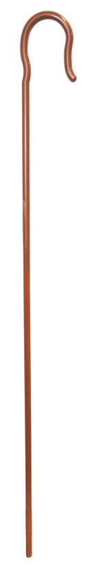 Giant Shepherd's Crook Religious Bible Adult's Halloween Costume Accessory_thumb.jpg