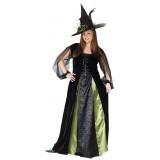 Goth Maiden Witch Adult Plus Women's Costume